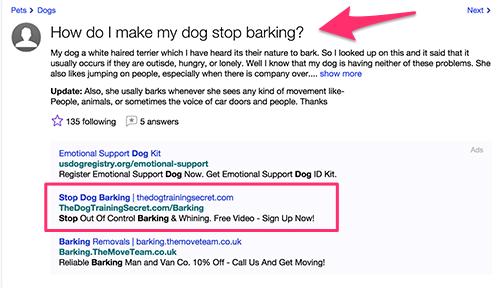 dog-training-answers