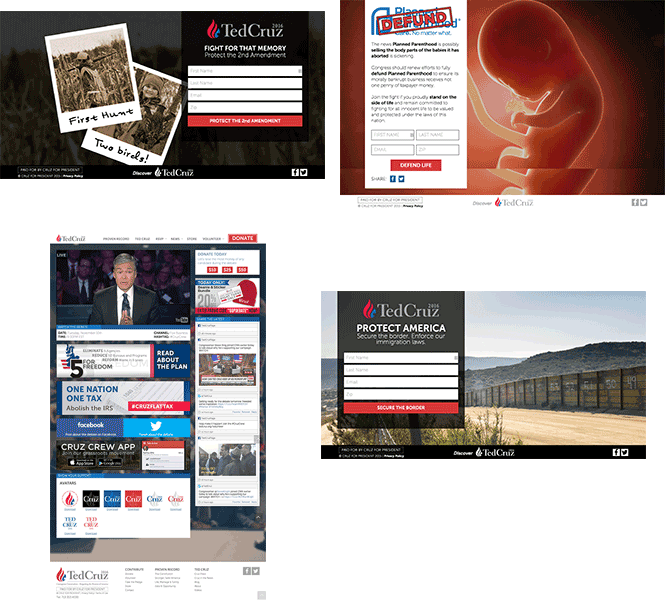 ted-cruz-landing-pages